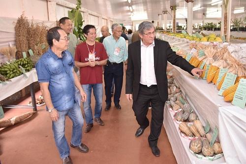 Exposição Agrícola é aberta oficialmente ao público nesta quinta-feira